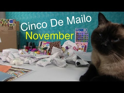 Cinco De Mailo   Fan Mail Opening   November 2015   PSToyReviews