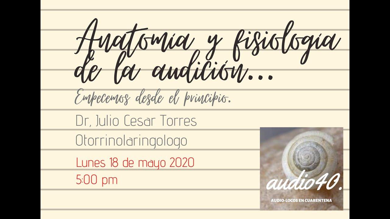 ANATOMÍA Y FISIOLOGÍA DE LA AUDICIÓN ORL. JULIO CESAR TORRES