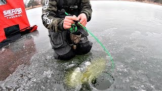 Catching His BIGGEST Bass EVER!!! (Crazy Clear Ice)