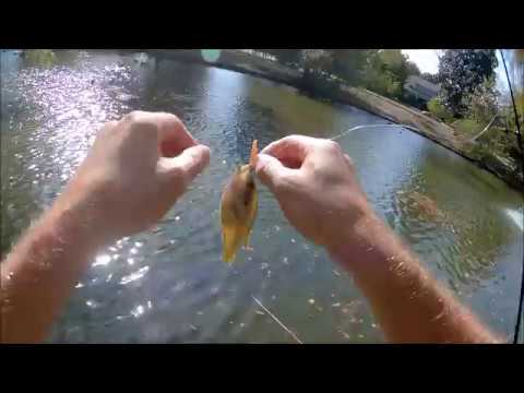 Tulsa Fishing: Easy Angling At Owen's Park Pond