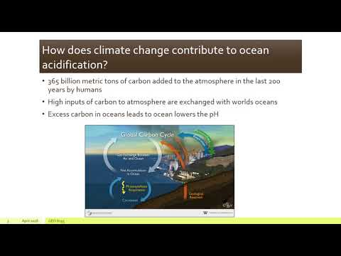 Ocean acidification: Evidence of anthropogenic climate change