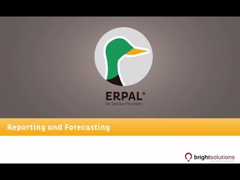 06 ERPAL for Service Providers - Reporting and business analytics