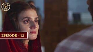Do Bol Episode 12 | Top Pakistani Drama
