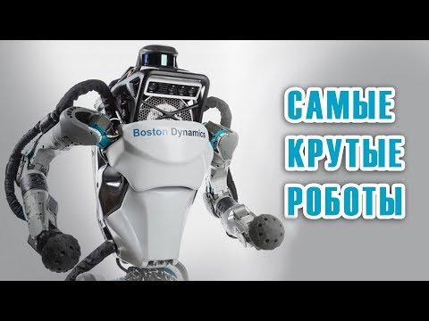 Самые крутые роботы 2019
