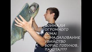 Изнасилование, убийство, чемпионат по пахоте и сом! Новости Владимира за неделю