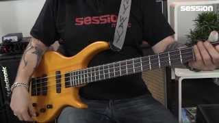 Epiphone Toby Deluxe-IV Bass TA