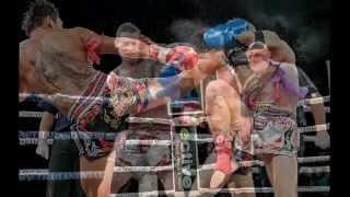 World of Mixed Martial Arts - MMA