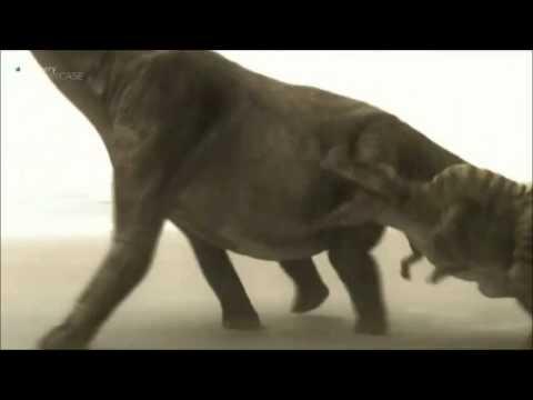 mega beasts acrocanthosaurus tribute