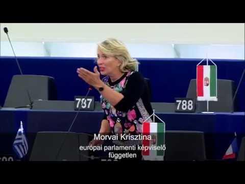 A Sargentini-jelentés elbukott - Sorosék írhatják az újat! Nincs meg a kétharmad - állítja Morvai