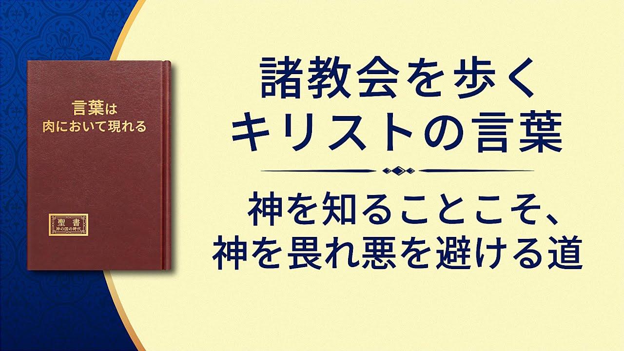 神の御言葉「神を知ることこそ、神を畏れ悪を避ける道」