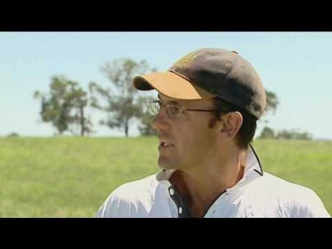WIN News clip on No Kill Cropping and Pasture Cropping with Angus Maurice