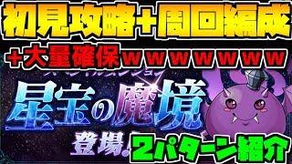 神ダンジョン!星宝の魔境 初見+周回編成2パターン紹介!!ぼっち大歓喜【パズドラ】