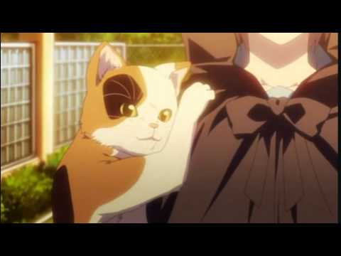 Kyon And The Talking Cat.