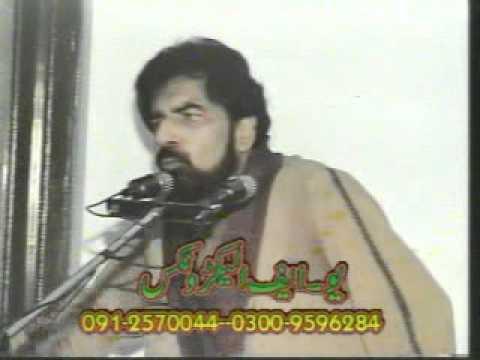 Allama Dr Syed Shabih ul Hassan Rizvi Part 5