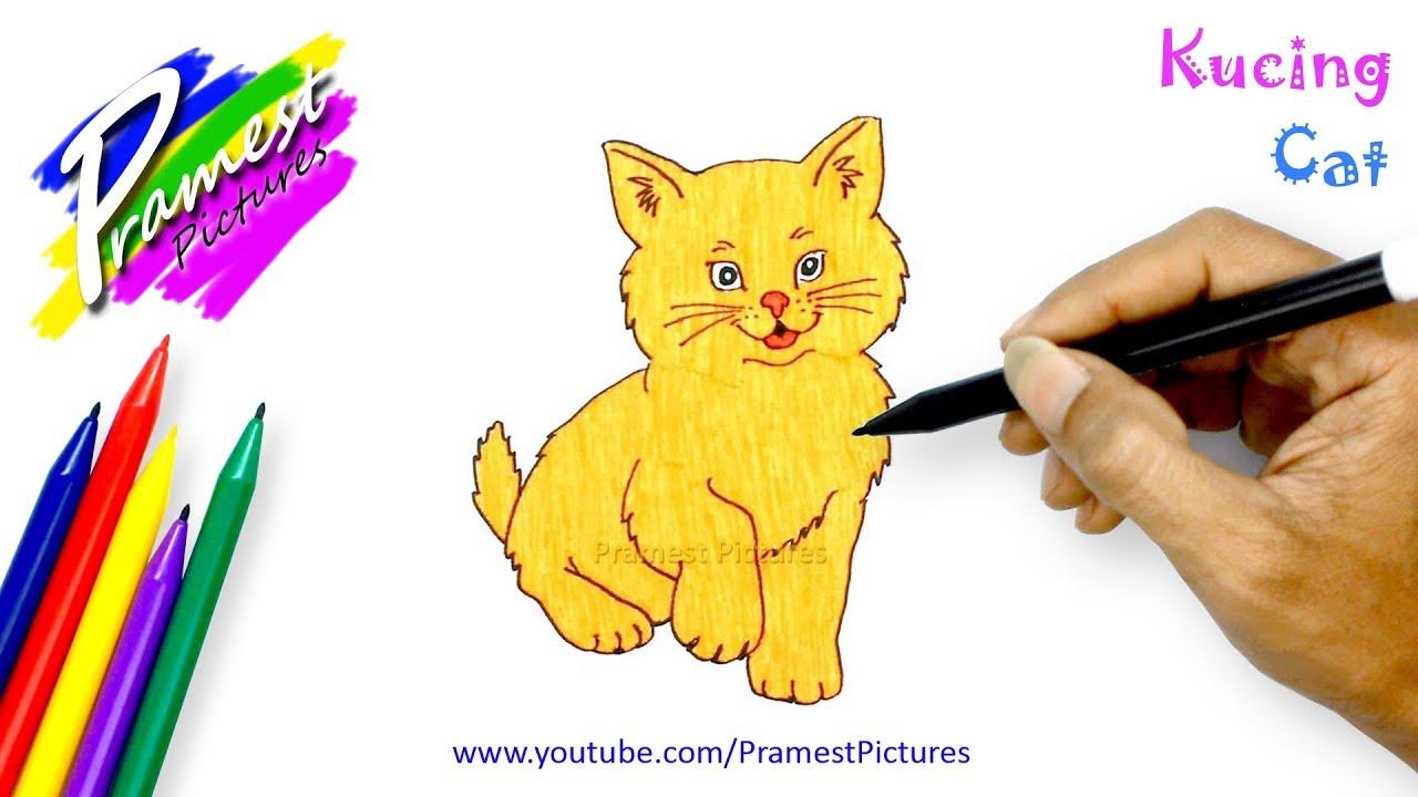 Kucing Belajar Menggambar Dan Mewarnai Hewan Untuk Anak Youtube