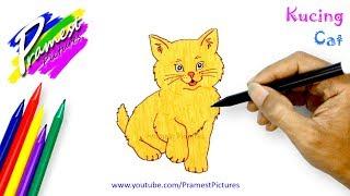 Kucing 🎨 Belajar Menggambar Dan Mewarnai Gambar Hewan (How to Draw Cat - Animal Coloring Pages)