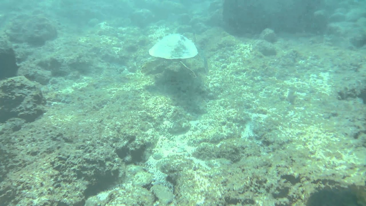 Na Mokulua Hawaii: Na Mokulua (Two Islands