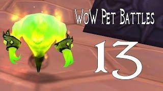Mists Of Pandaria Pet Battles 13 Northrend Pet Trainer Masters (world Of Warcraft)