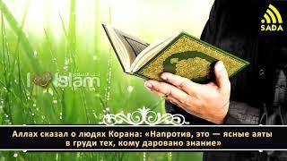 "Мухаммад Шинкити: ""Советы по заучиванию Корана"""