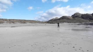 Ashdale Dog Training, Ayrshire - Break Off And Recall On Sanna Beach