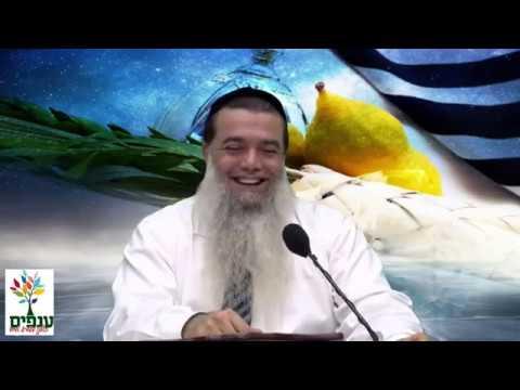 סוכות: חג של שמחה😂 - הרב יגאל כהן HD - הקרנה מיוחדת!🔊
