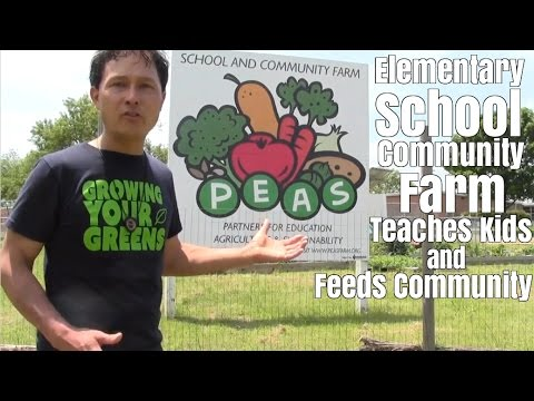 Elementary School Farm Teaches Kids and Feeds Community