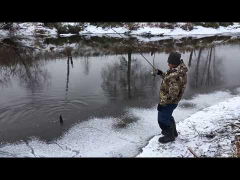 Рыбалка на реке оша