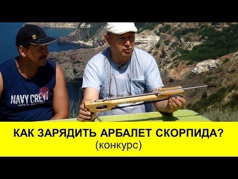 Краткий обзор арбалета для подводной охоты СКОРПИДА+ Конкурс