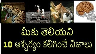Interesting Facts in Telugu   Amazing Facts in Telugu Episode-19   Telugu Badi