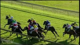 Vidéo de la course PMU PRIX OPEN A TABGOLD ACCOUNT - 031 314 1874 FM 86 HANDICAP