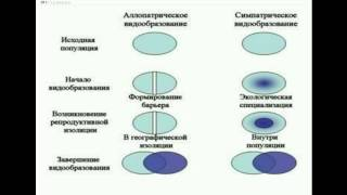 Биология - 1 занятие - подготовка к ЕНТ 2015 - 11 класс