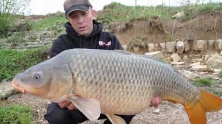 pêche de la carpes, silure et esturgeon 2010 avec loirbaits