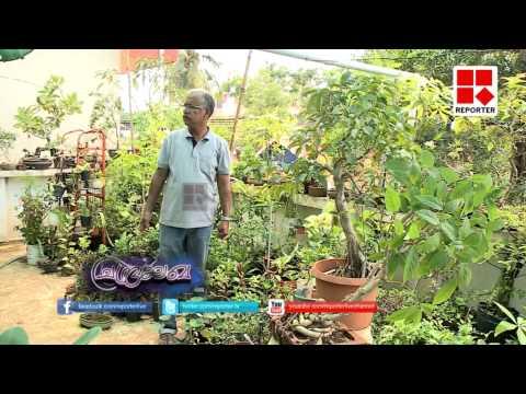 Home gardening easy methods;  Chandralekha ladies special programme