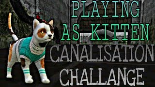 Cat Sim - Playing As Kitten ~ Canalisation Challange