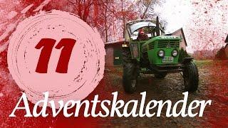 Adventskalender Türchen #11 - Schlittenfahrt | Kliemannsland
