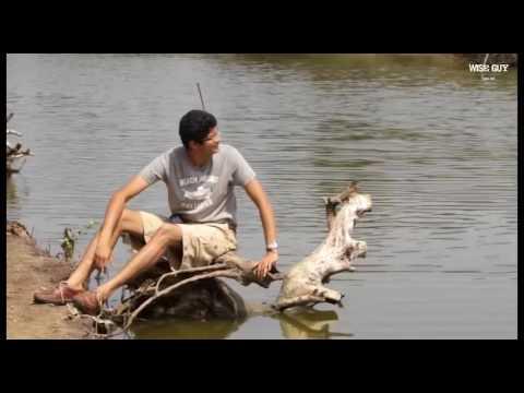 Maharashtra Nature Park - Documentary