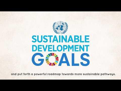 Presentation of the UNDP World Centre for Sustainable Development (RIO+ Centre)