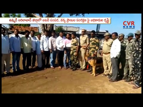 Adilabad Forest Officials To take On Forests and Wildlife Conservation | CVR News