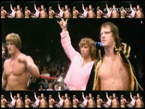 Is anyone watching Hulk Hogans Celebrity Championship ...