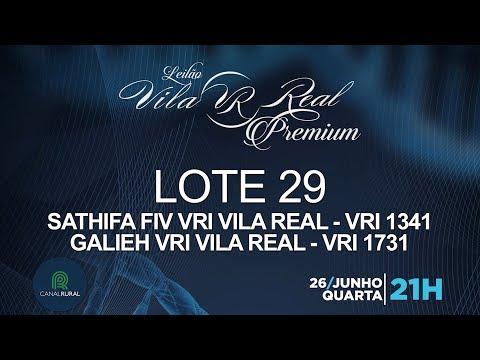 LOTE 29 (VRI 1341/VRI 1731)
