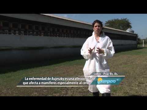 PAMPERO TV-28 DE