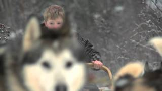 Dogsledding in Newfoundland and Labrador
