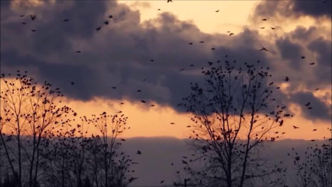 uaral-la-vaga-esperanza-de-ser-letra-lyrics-byo-hr