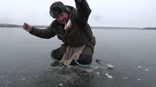 Очередной первый лед густера сошла с ума Зимняя ловля на мормышку