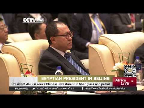 Egyptian President Al-Sisi seeks Chinese investment in fiber glass and petrol