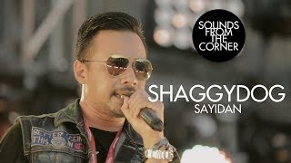 Download lagu Shaggydog - Sayidan | Sounds From The Corner Live #23
