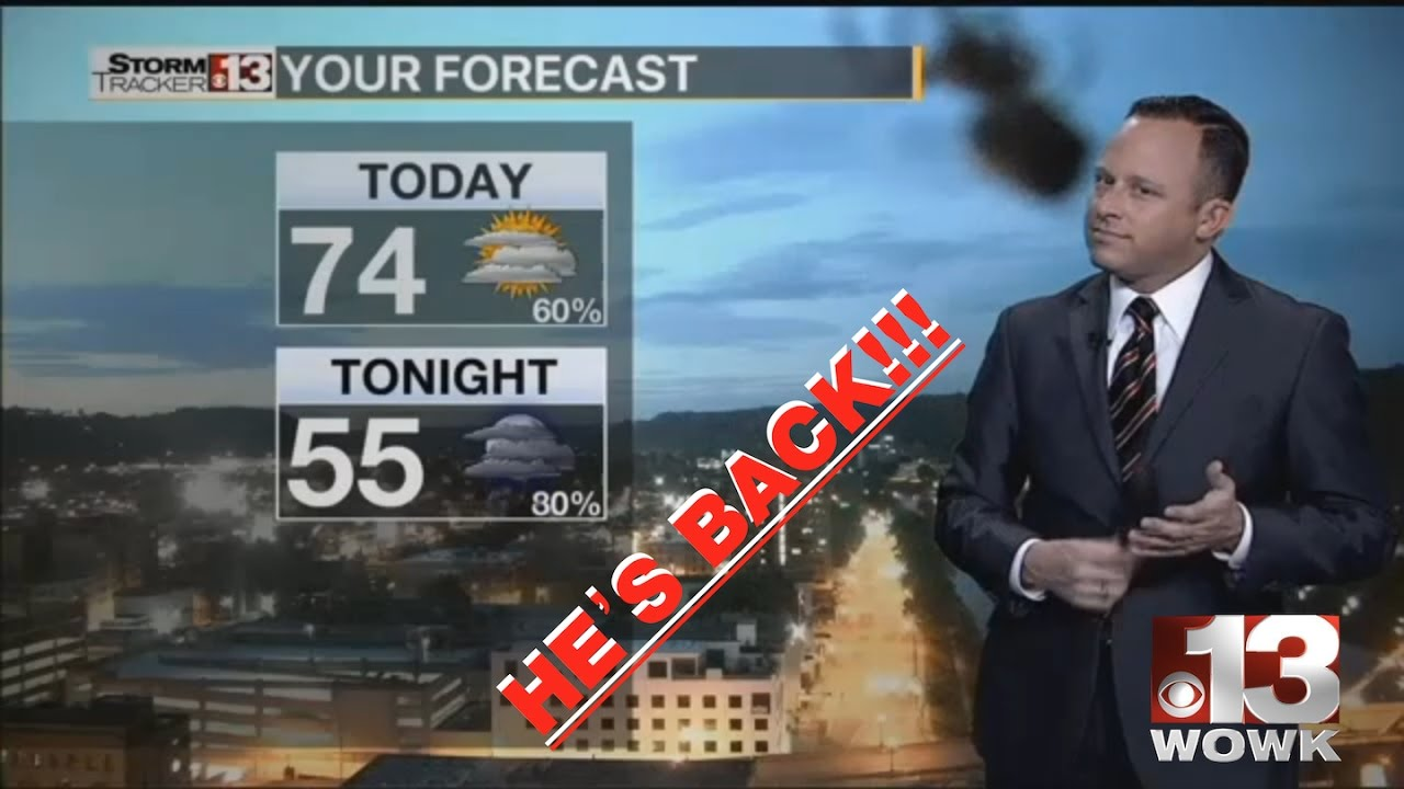 Huntington Wv News >> Holy Spider Scream Wowk 13 Charleston Huntington Wv News Weather
