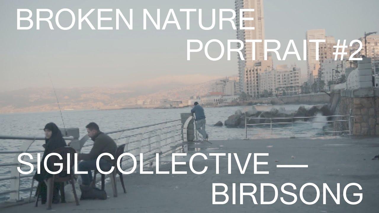 Broken Nature Portrait #2: Sigil Collective—Birdsong