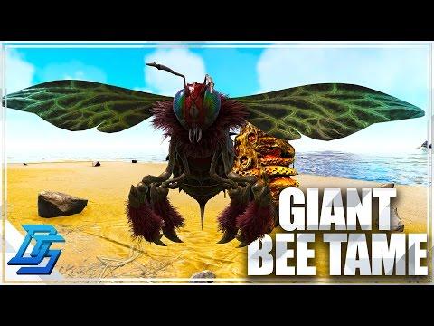 Taming the Giant Bee , Honey Farm - Ark Survival Evolved - Pt 15 (Pugnacia)