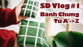 SD Vlog #1: TẾT ở SD studio - Chúng tớ tự gói bánh chưng như thế nào ;)
